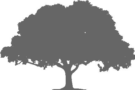 長野で木の家を建てたい人のためのブログ
